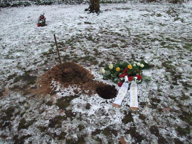 Urnenbestattung unter den Bäumen des Bruckes Friedhofes